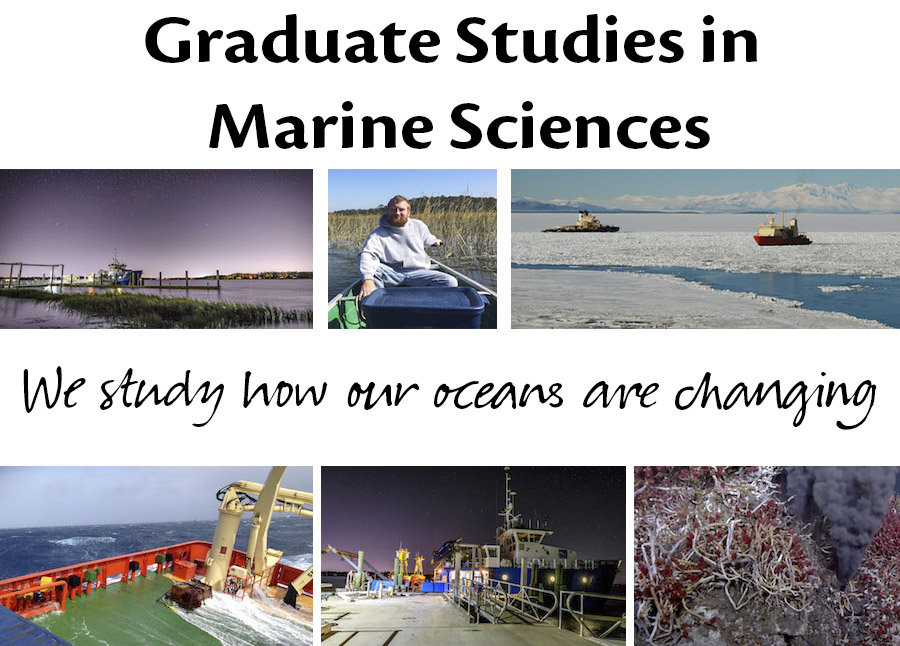 Collage of ocean and marine science photos